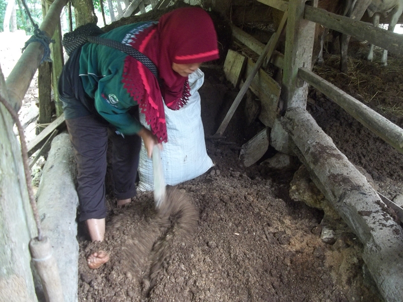 woman farmer shows her peer on how to make compost